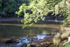 scenic_river